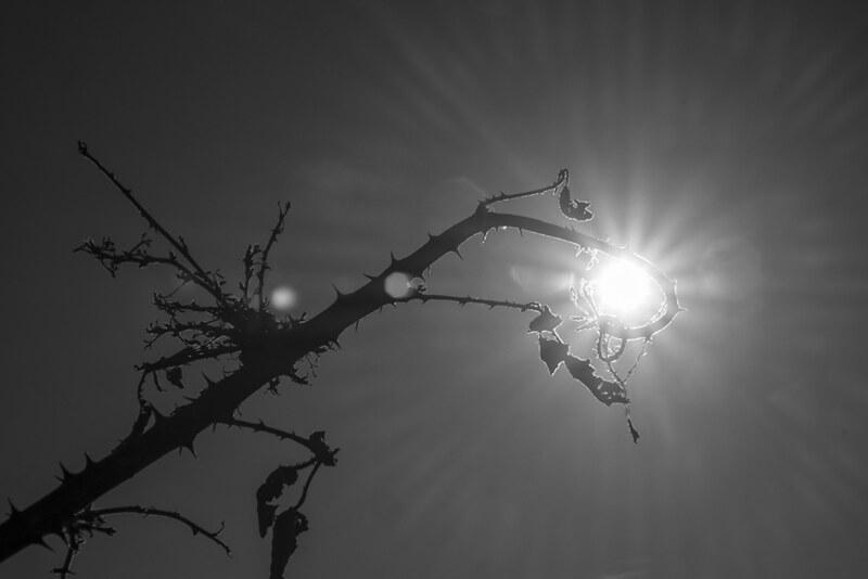 ombra e luce